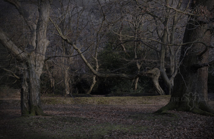 Epping Forest Ghosts