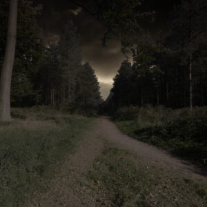 Cannock Chase Ghosts