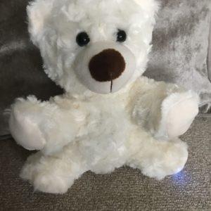REM POD TEDDY BEAR
